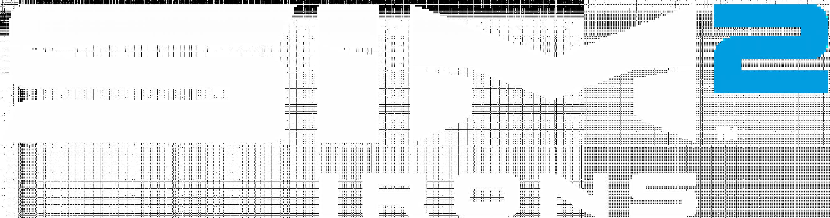 SIM2 Irn Logo