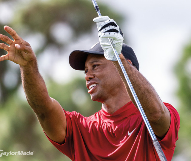 Tiger Woods Taylor Made4r