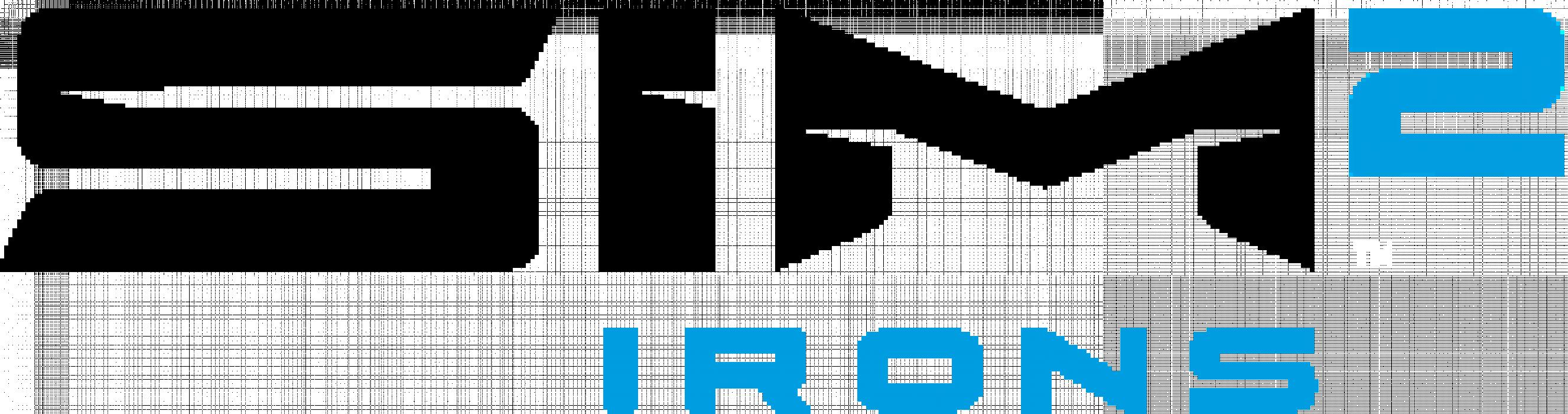 SIM2 Irn Logo alt